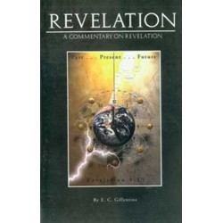 Revelation - A Commentary on Revelation